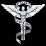 ChiropracticShield